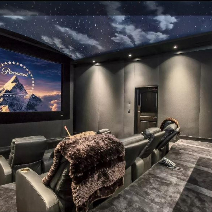 Theater Room Biscayne 2